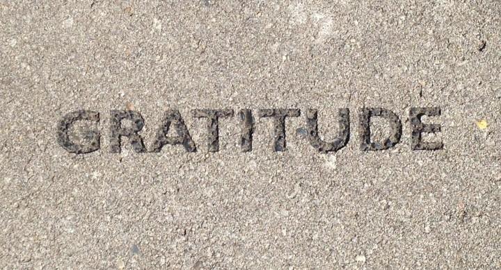 Positivity Practice #2:Gratitude