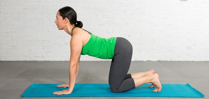 New ACE Fitness Blog Post is Live: 10 Yoga Poses to Alleviate Low Back Pain